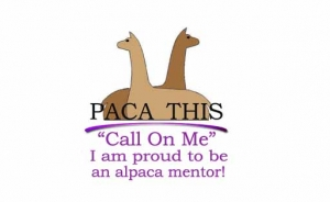 A and A Alpacas Mentor Paca This